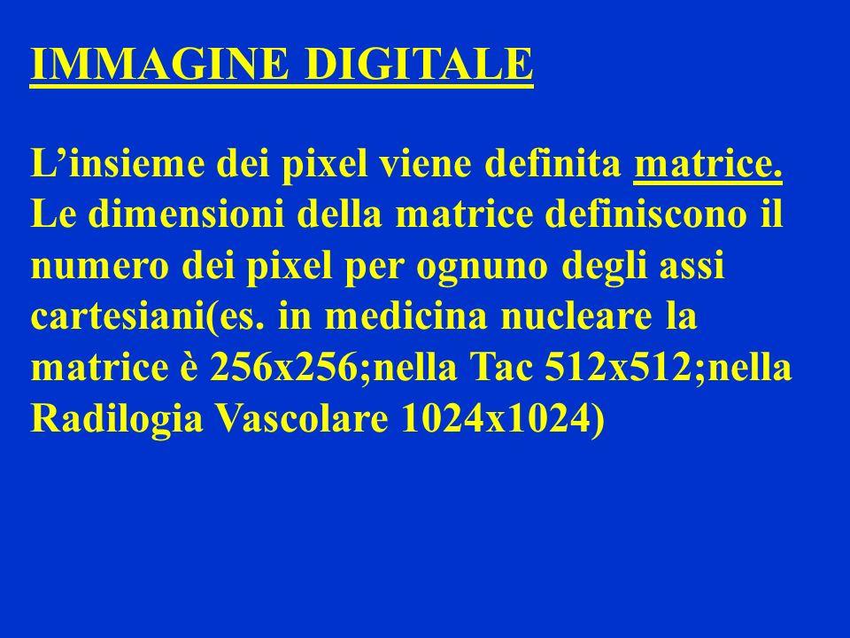 IMMAGINE DIGITALE L'insieme dei pixel viene definita matrice.
