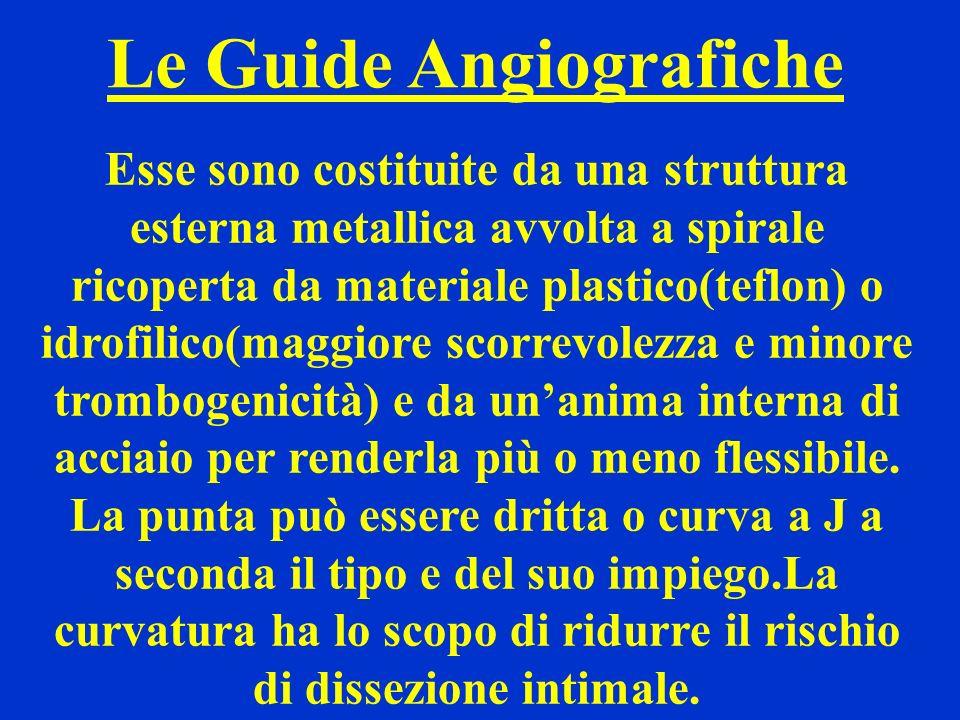 Le Guide Angiografiche