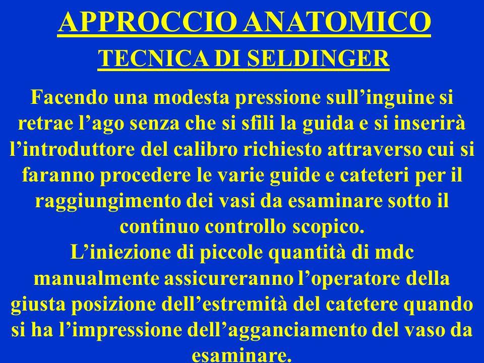 APPROCCIO ANATOMICO TECNICA DI SELDINGER