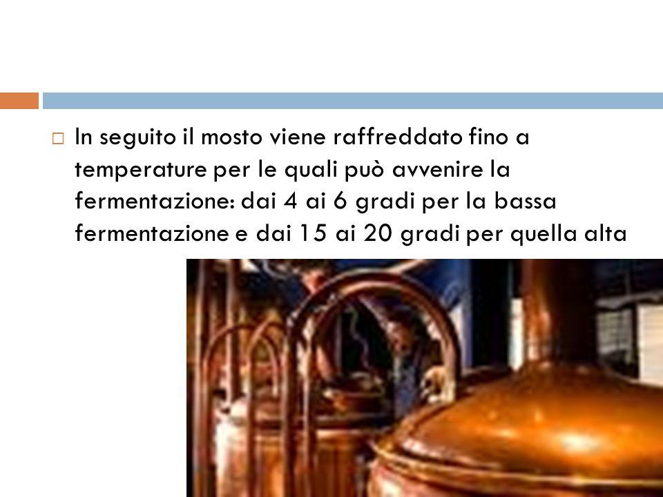 In seguito il mosto viene raffreddato fino a temperature per le quali può avvenire la fermentazione: dai 4 ai 6 gradi per la bassa fermentazione e dai 15 ai 20 gradi per quella alta
