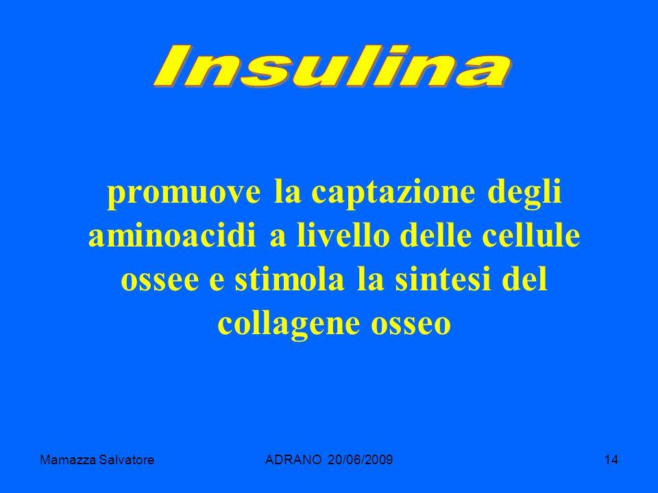 Insulinapromuove la captazione degli aminoacidi a livello delle cellule ossee e stimola la sintesi del collagene osseo.