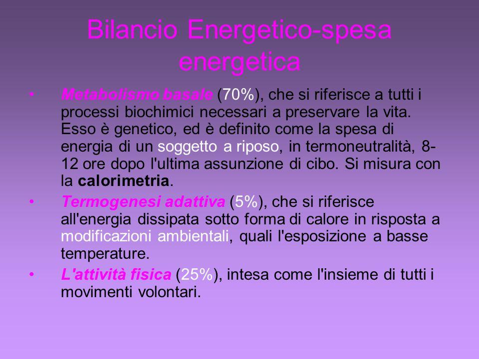 Bilancio Energetico-spesa energetica