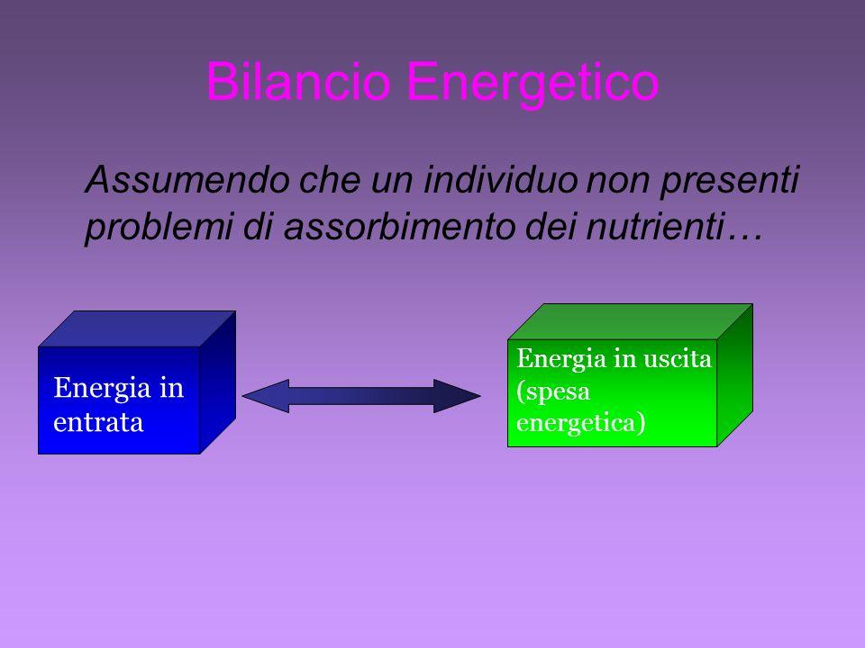 Bilancio Energetico Assumendo che un individuo non presenti problemi di assorbimento dei nutrienti…