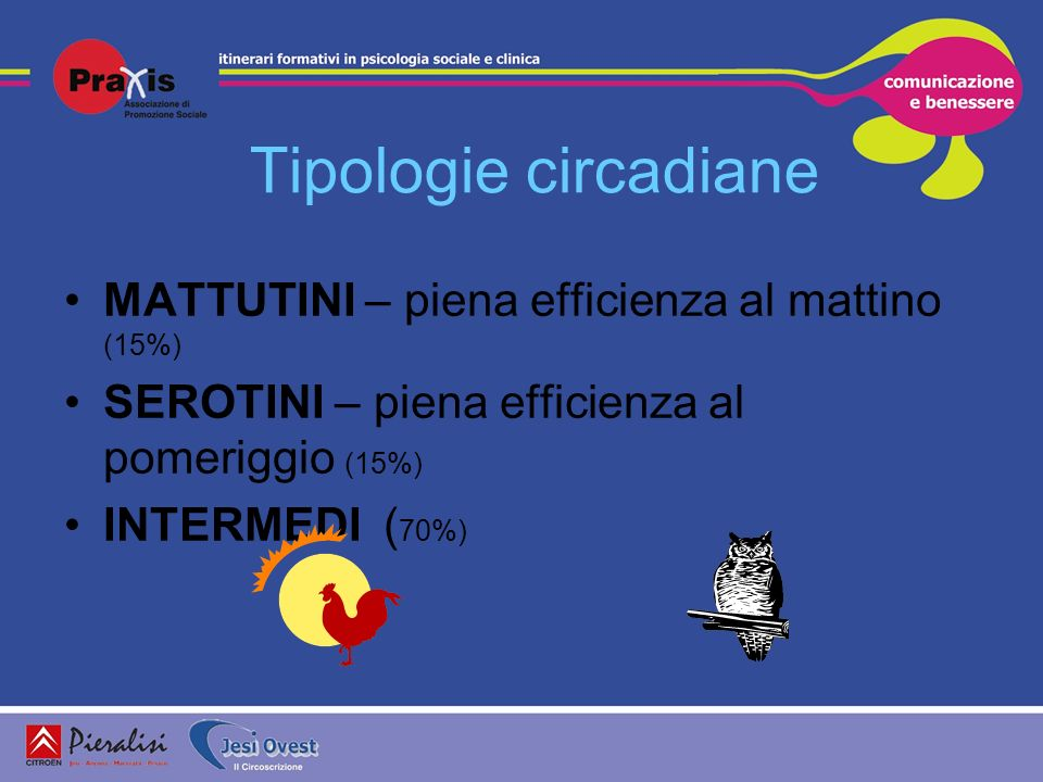 Tipologie circadiane MATTUTINI – piena efficienza al mattino (15%)