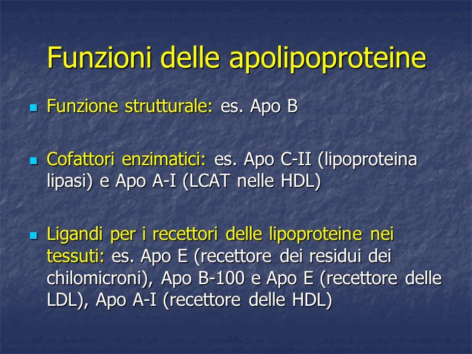 Funzioni delle apolipoproteine