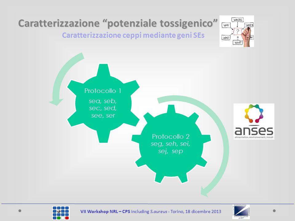 Caratterizzazione potenziale tossigenico