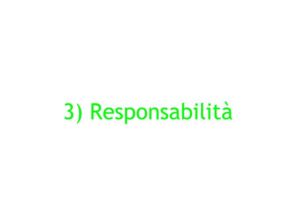 3) Responsabilità