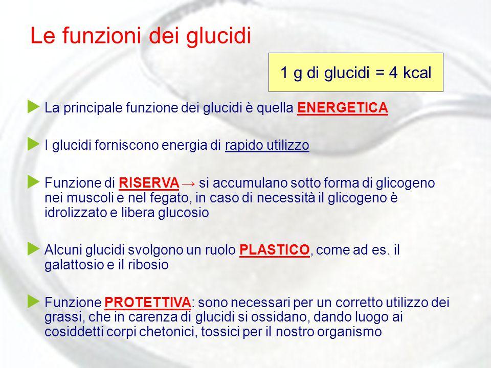 Le funzioni dei glucidi