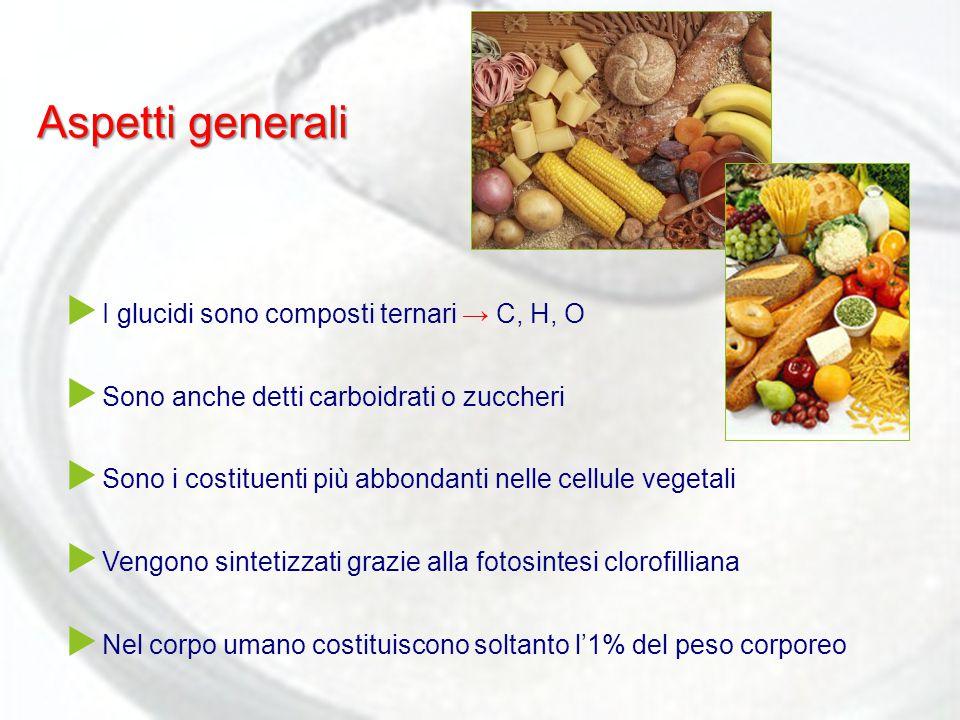 Aspetti generali I glucidi sono composti ternari → C, H, O