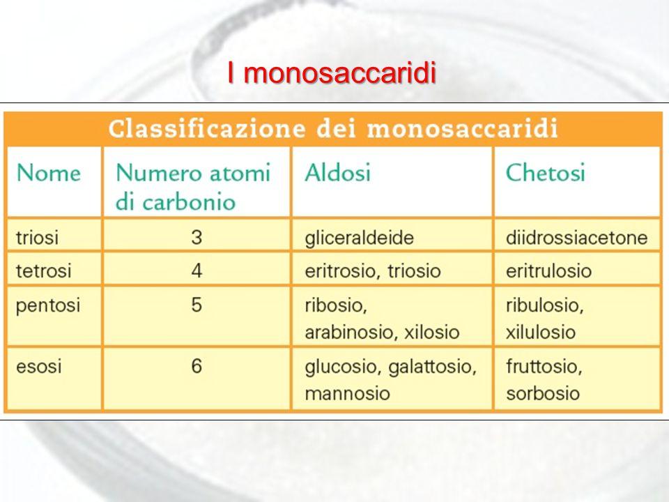 I monosaccaridi