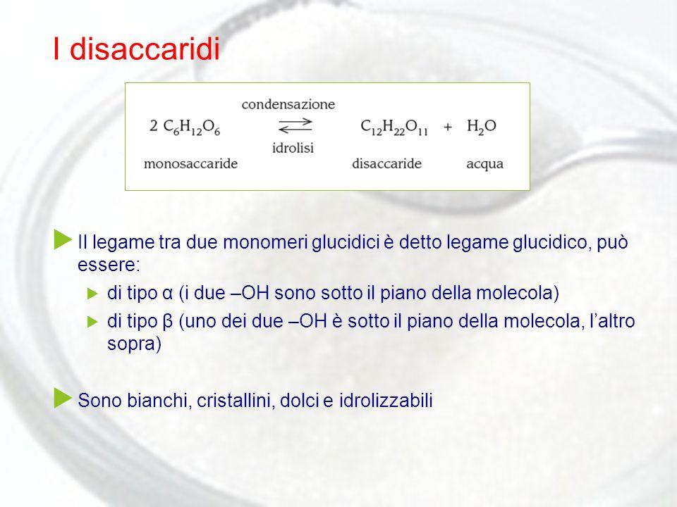 I disaccaridi Il legame tra due monomeri glucidici è detto legame glucidico, può essere: di tipo α (i due –OH sono sotto il piano della molecola)