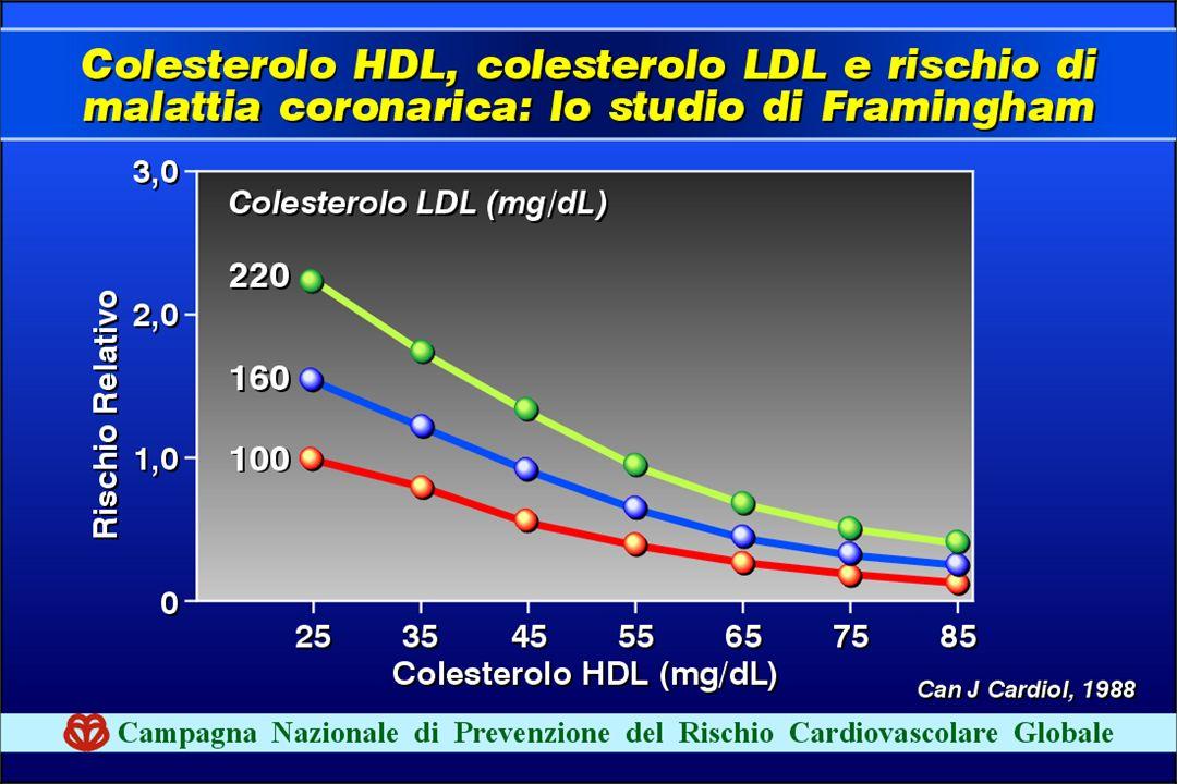 Il colesterolo HDL è invece protettivo è il suo valore è inversamente proporzionale al rischio