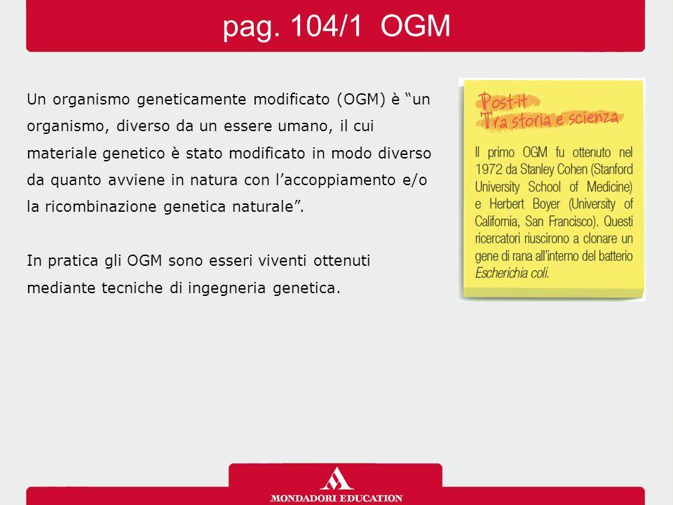 pag. 104/1 OGM