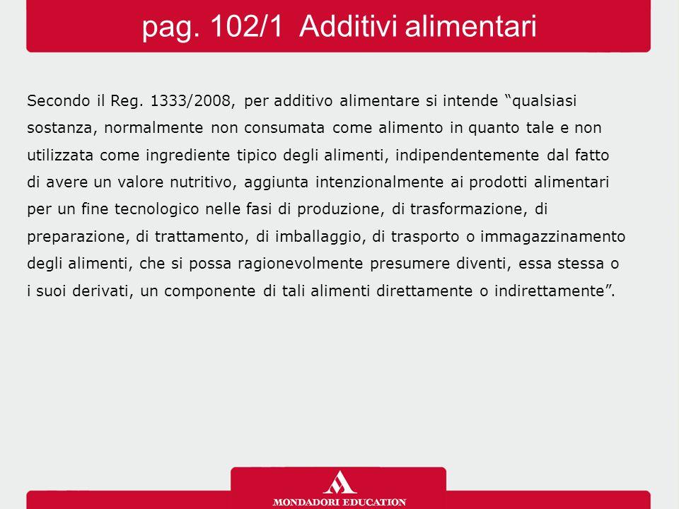 pag. 102/1 Additivi alimentari