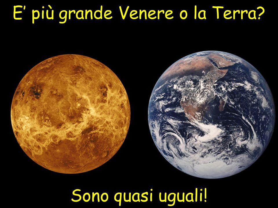 E' più grande Venere o la Terra