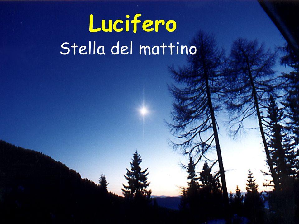 Lucifero Stella del mattino