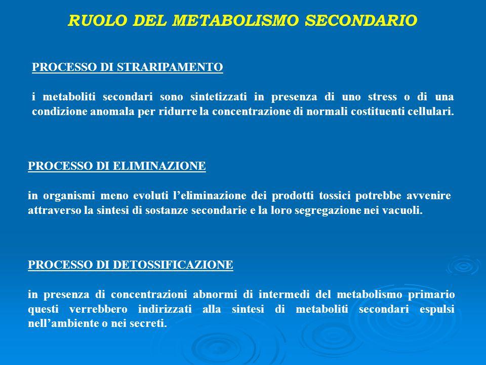 RUOLO DEL METABOLISMO SECONDARIO