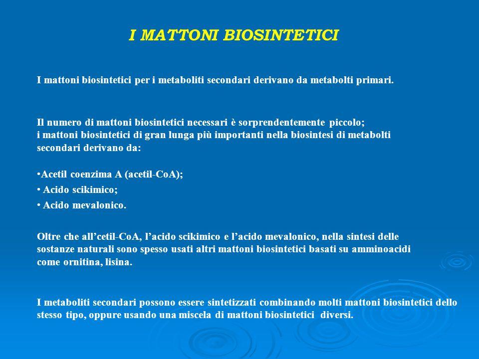 I MATTONI BIOSINTETICI