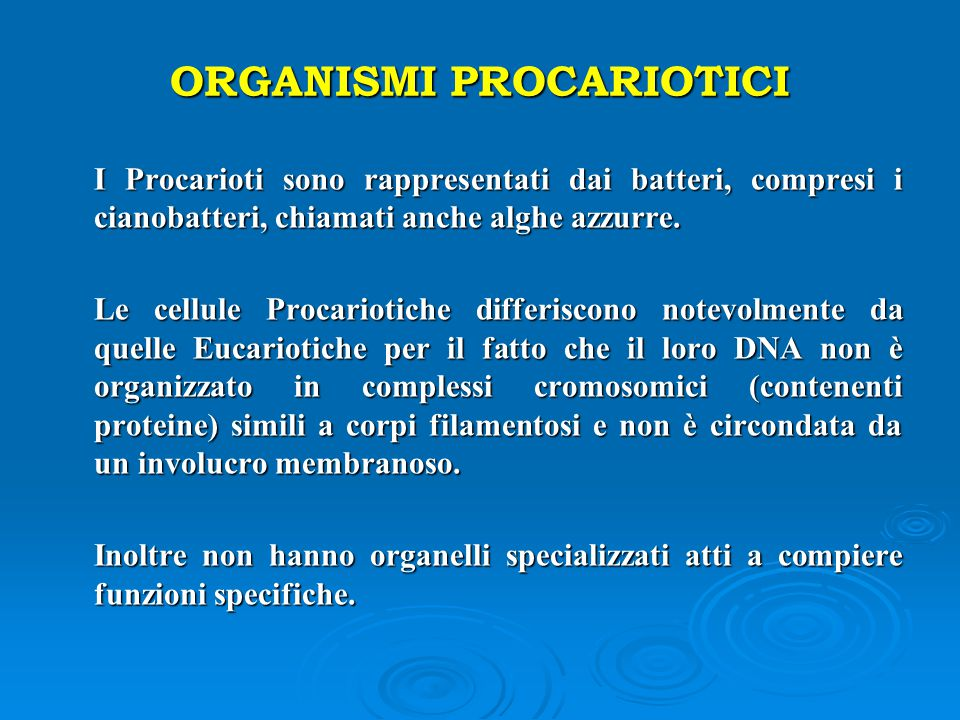 ORGANISMI PROCARIOTICI