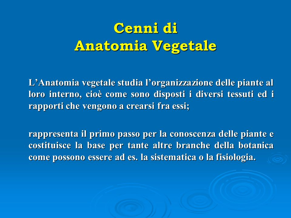 Cenni di Anatomia Vegetale