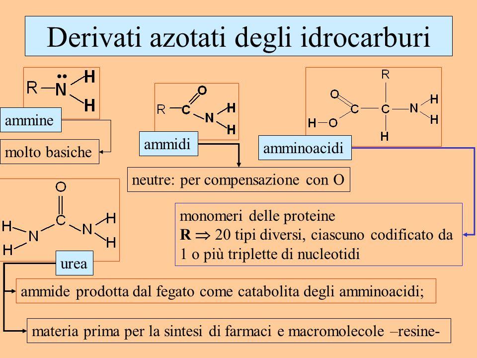 Derivati azotati degli idrocarburi