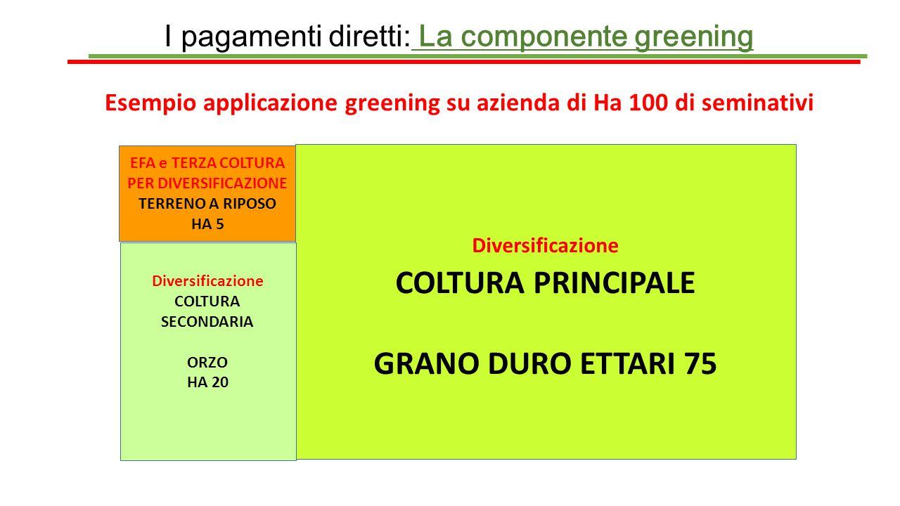 COLTURA PRINCIPALE GRANO DURO ETTARI 75