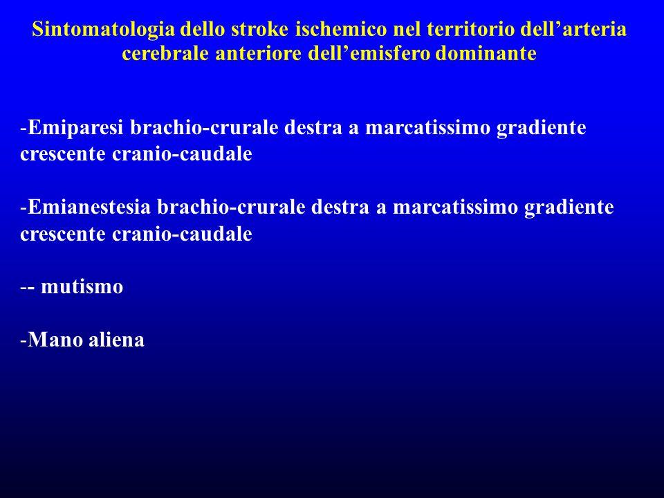 Sintomatologia dello stroke ischemico nel territorio dell'arteria cerebrale anteriore dell'emisfero dominante