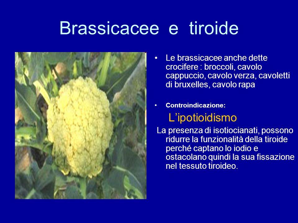 Brassicacee e tiroide Le brassicacee anche dette crocifere : broccoli, cavolo cappuccio, cavolo verza, cavoletti di bruxelles, cavolo rapa.