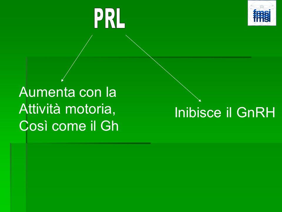 PRL Aumenta con la Attività motoria, Così come il Gh Inibisce il GnRH