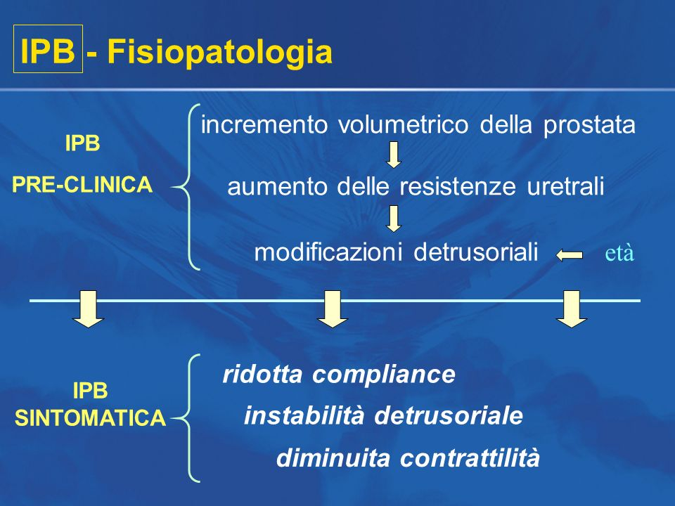 IPB - Fisiopatologia incremento volumetrico della prostata