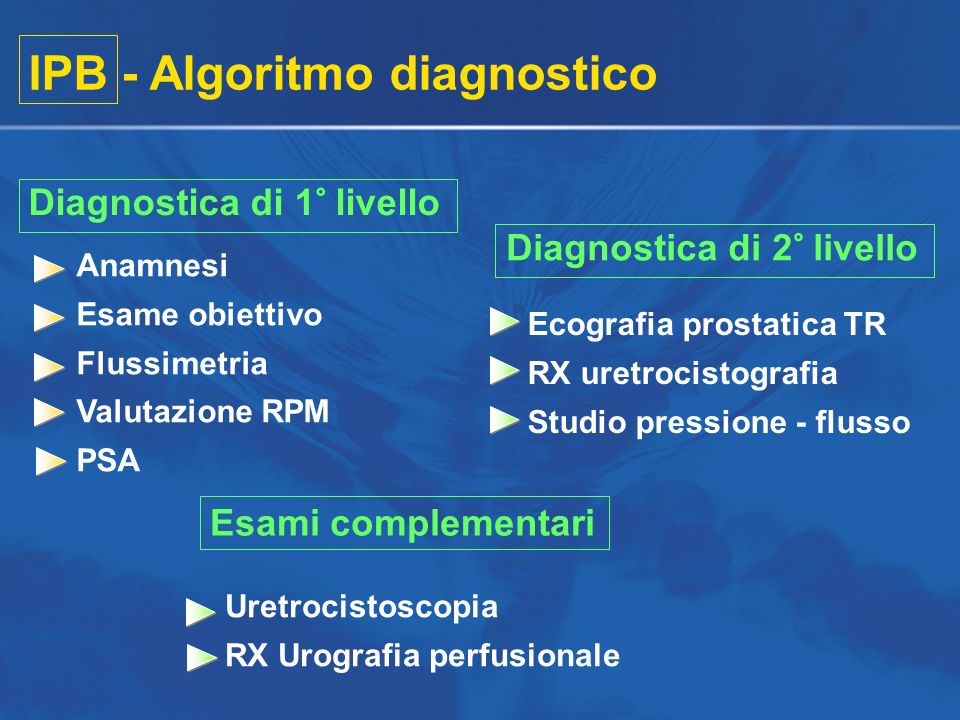 IPB - Algoritmo diagnostico