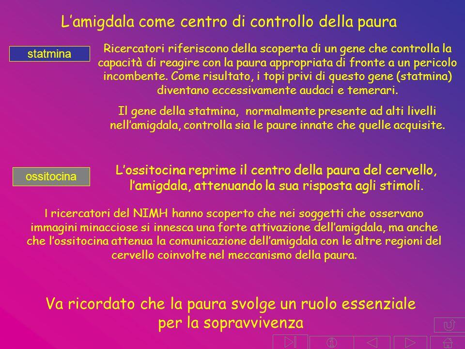 L'amigdala come centro di controllo della paura