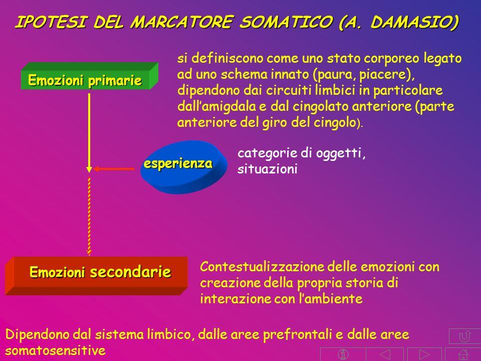 IPOTESI DEL MARCATORE SOMATICO (A. DAMASIO)