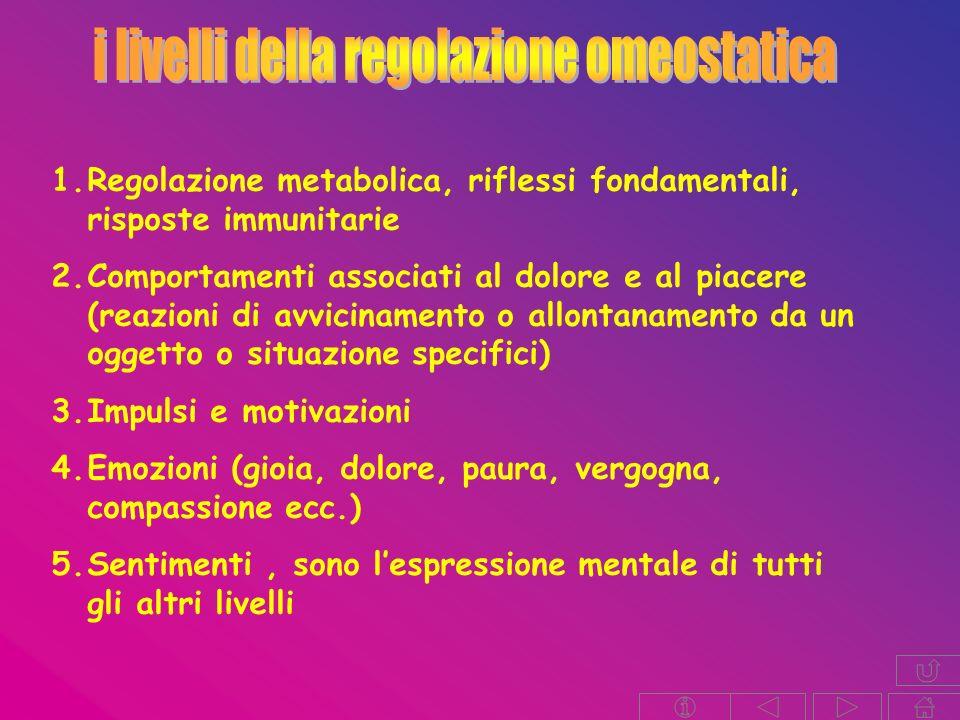i livelli della regolazione omeostatica
