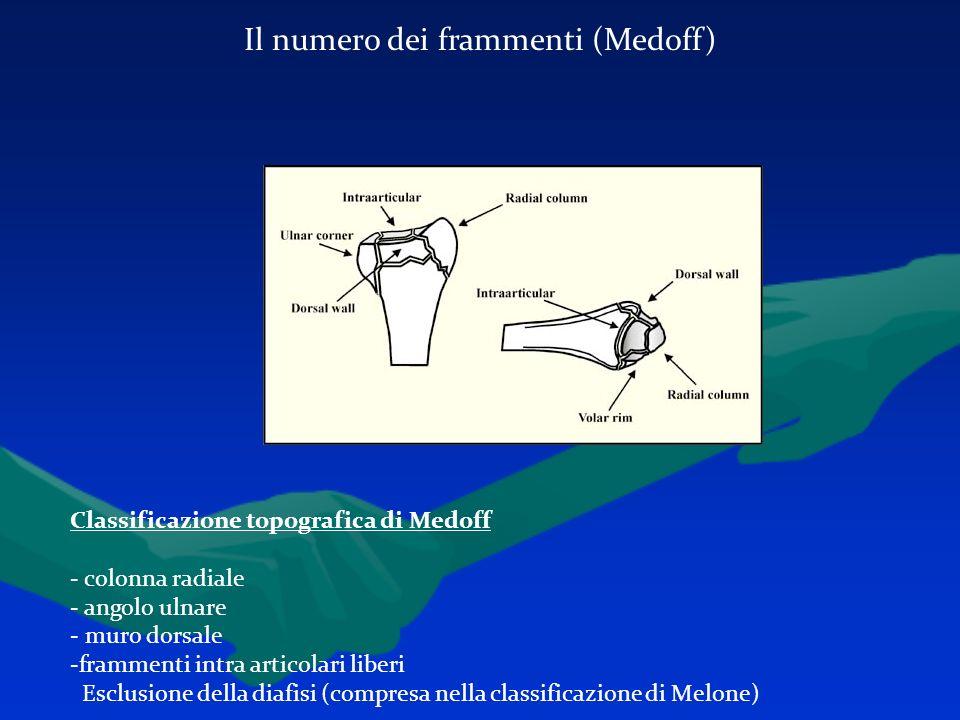 Il numero dei frammenti (Medoff)