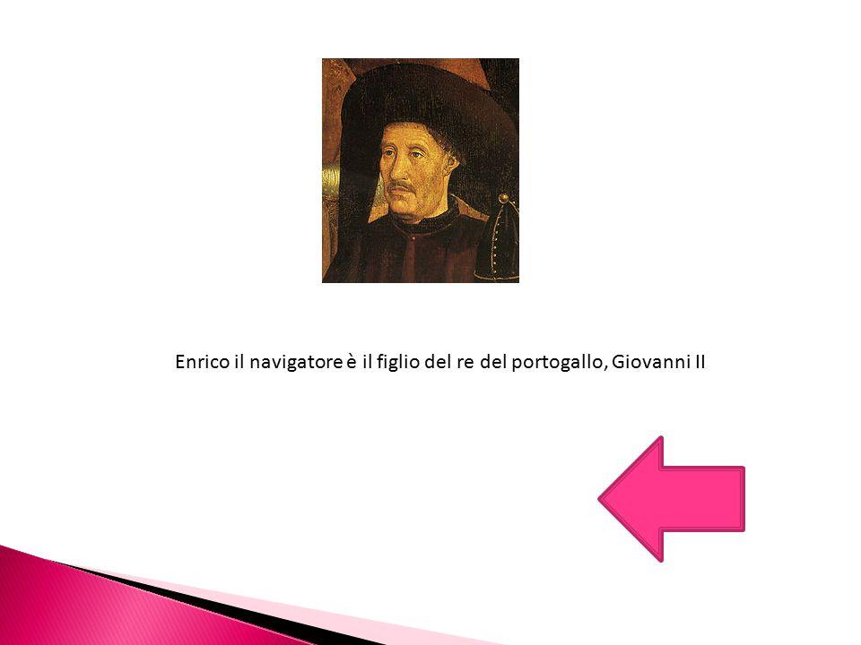 Enrico il navigatore è il figlio del re del portogallo, Giovanni II
