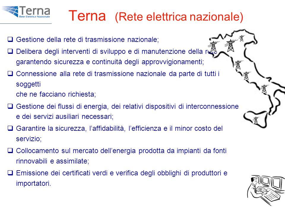Terna (Rete elettrica nazionale)