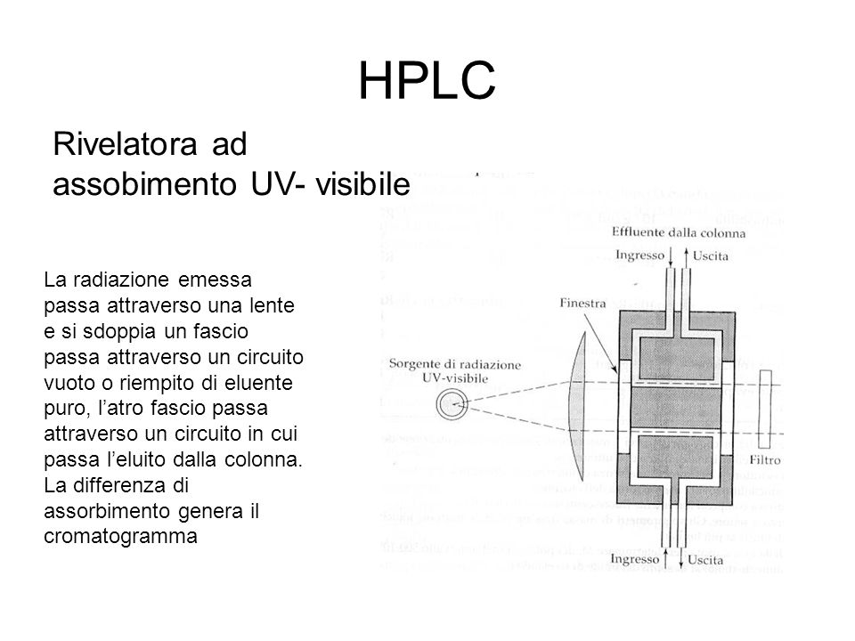 HPLC Rivelatora ad assobimento UV- visibile