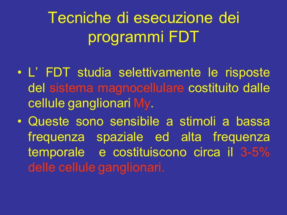 Tecniche di esecuzione dei programmi FDT