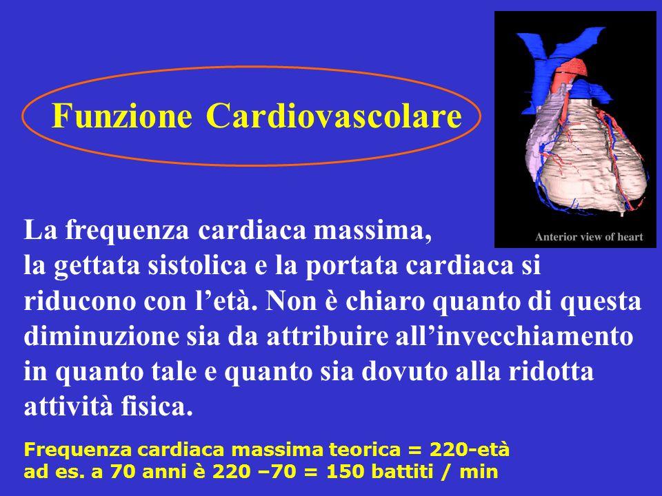 Funzione Cardiovascolare