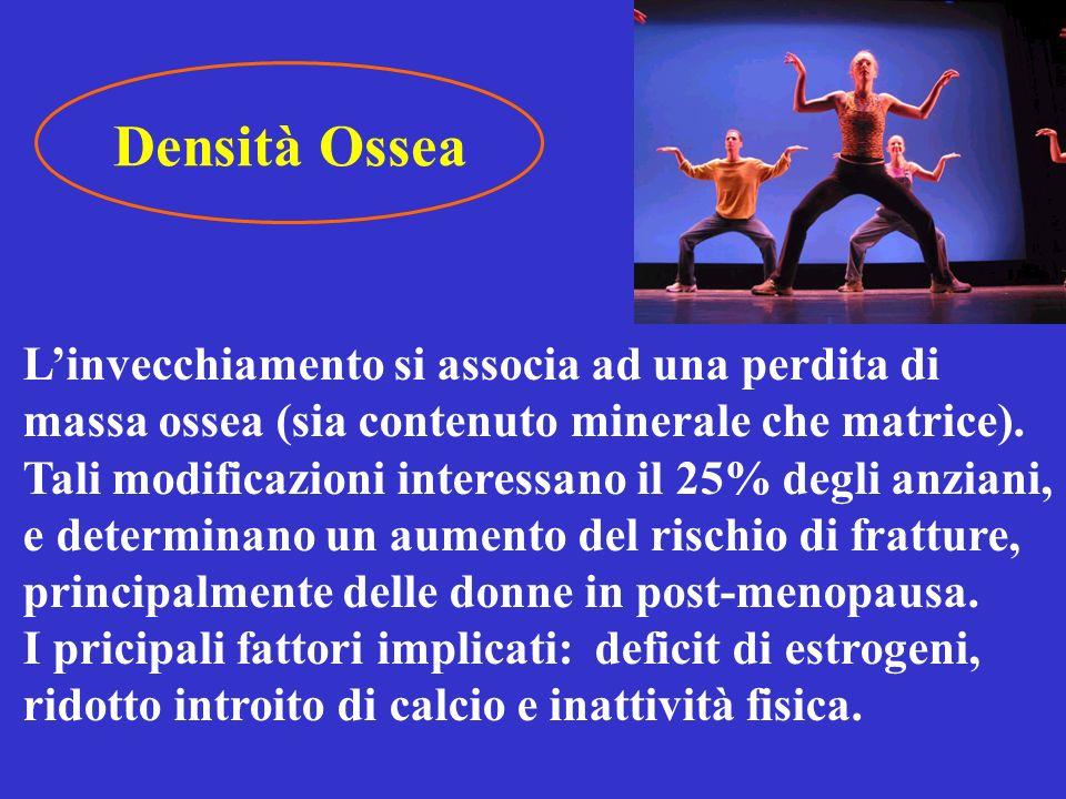 Densità Ossea L'invecchiamento si associa ad una perdita di massa ossea (sia contenuto minerale che matrice).