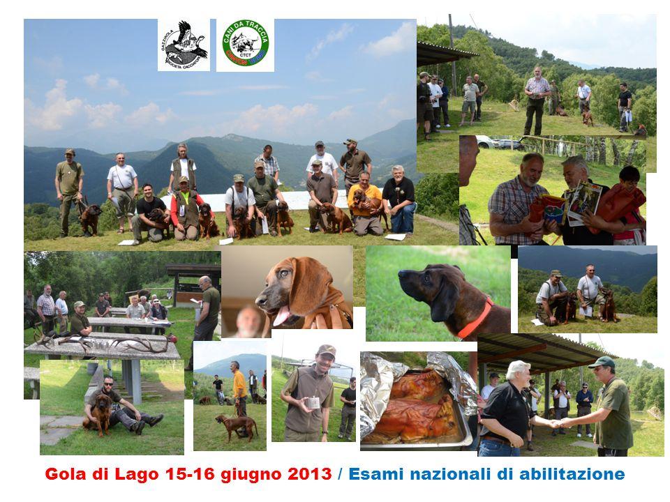 Gola di Lago 15-16 giugno 2013 / Esami nazionali di abilitazione