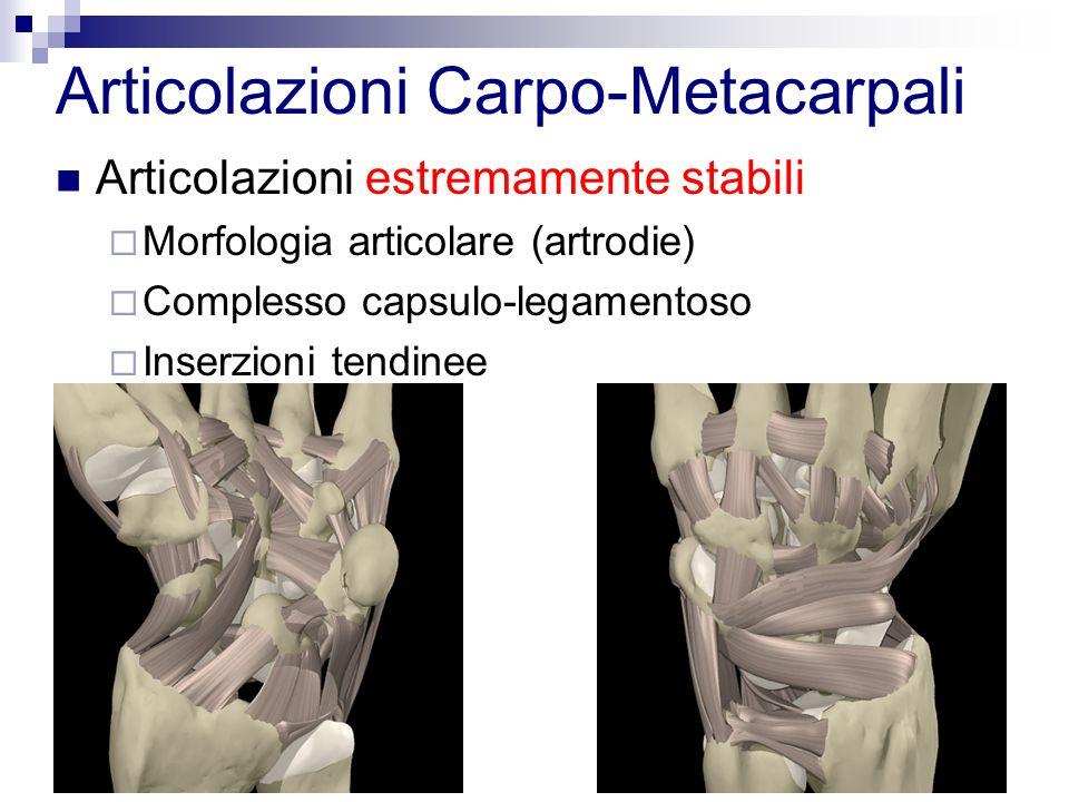 Articolazioni Carpo-Metacarpali