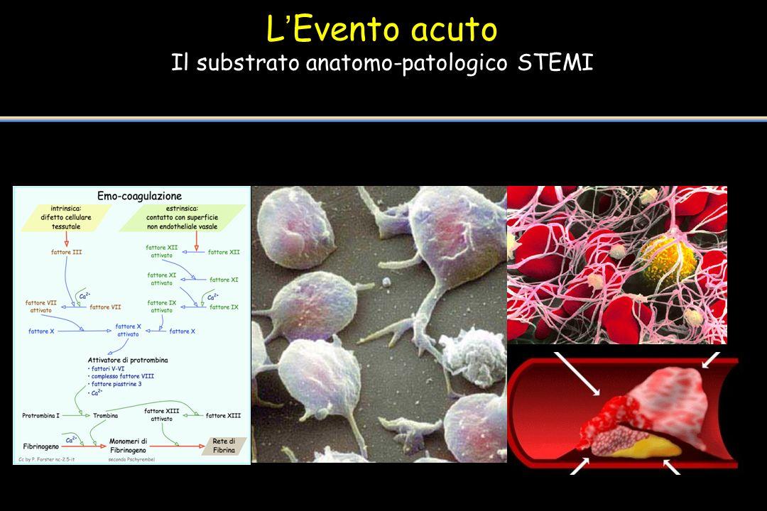 Il substrato anatomo-patologico STEMI
