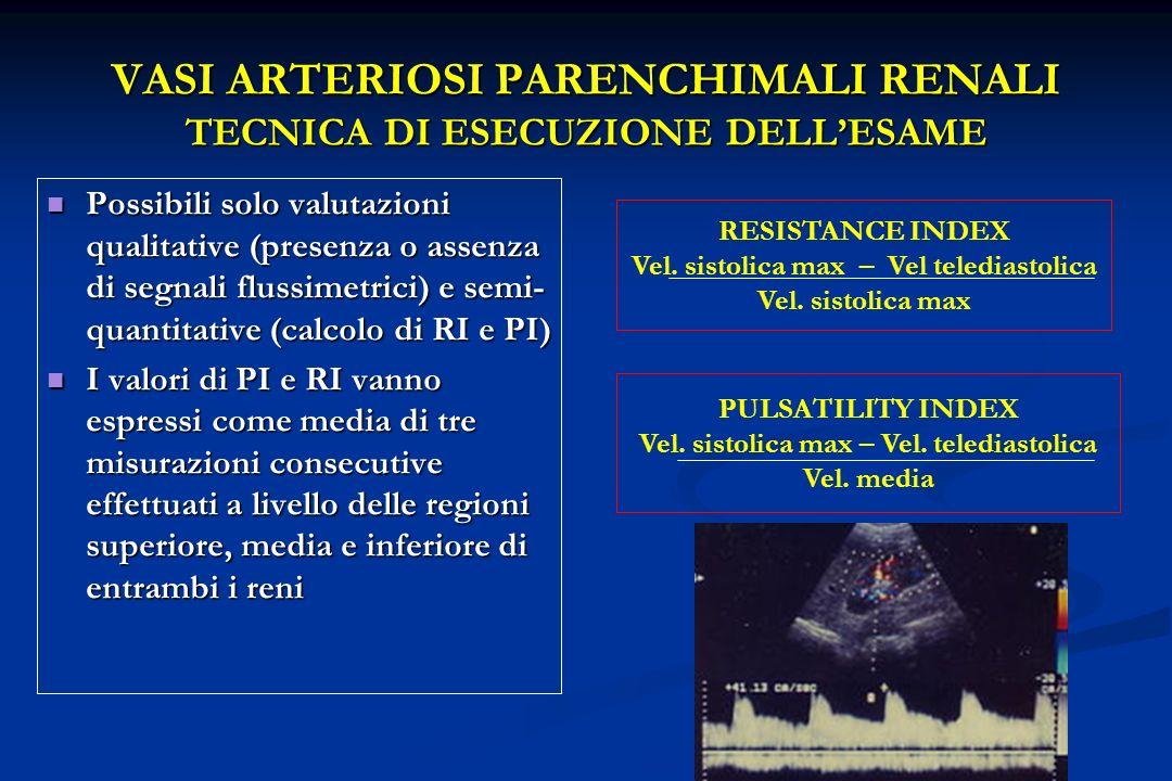 VASI ARTERIOSI PARENCHIMALI RENALI TECNICA DI ESECUZIONE DELL'ESAME