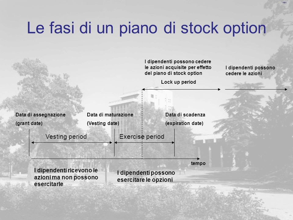 Le fasi di un piano di stock option