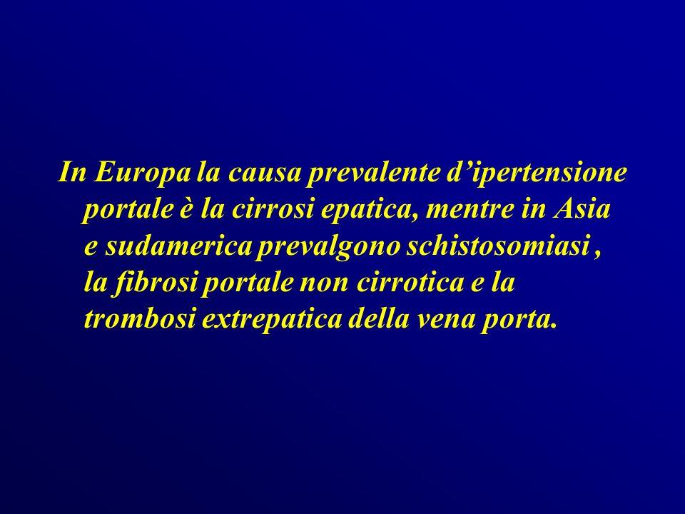 In Europa la causa prevalente d'ipertensione portale è la cirrosi epatica, mentre in Asia e sudamerica prevalgono schistosomiasi , la fibrosi portale non cirrotica e la trombosi extrepatica della vena porta.