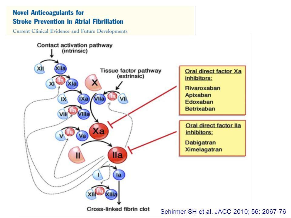 Schirmer SH et al. JACC 2010; 56: 2067-76