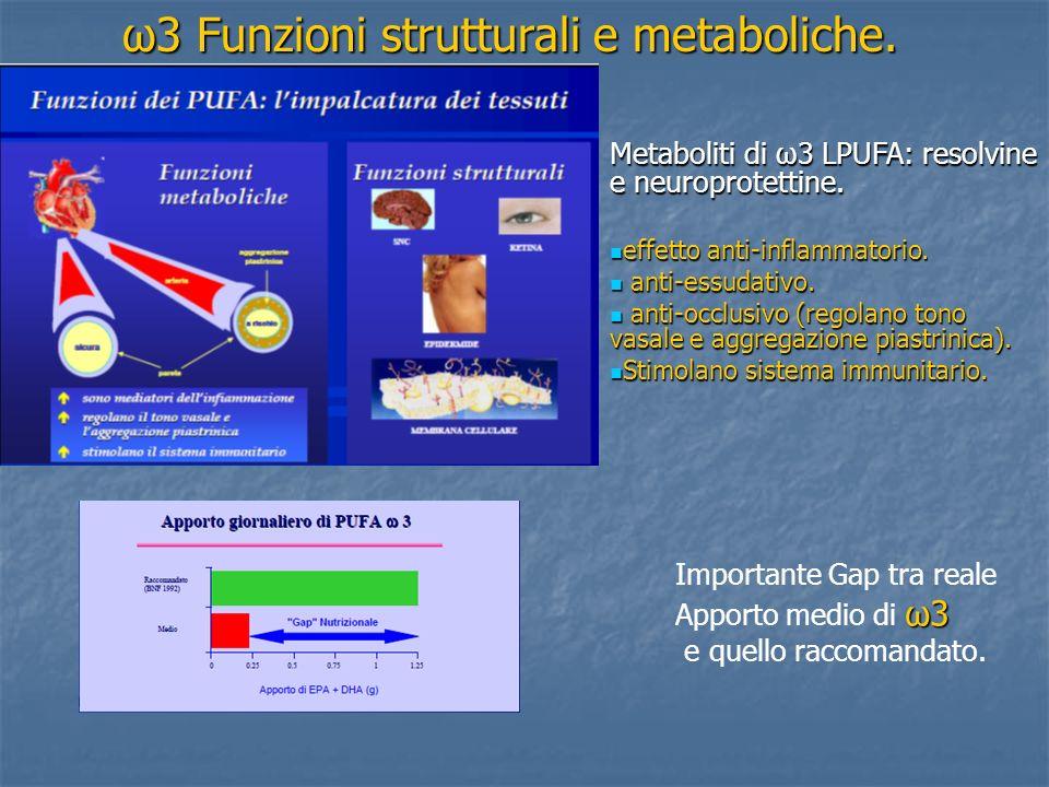 ω3 Funzioni strutturali e metaboliche.