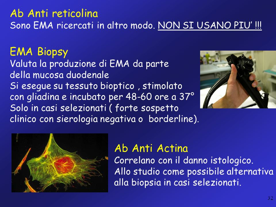 Ab Anti reticolina EMA Biopsy Ab Anti Actina